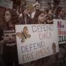 News & Guts banner: DACA