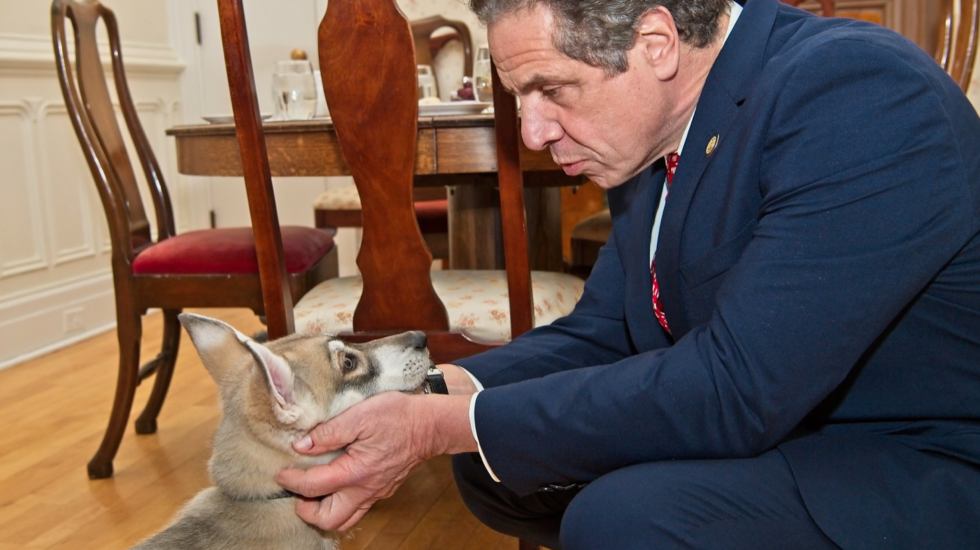 Governor Cuomo and his dog, Captain